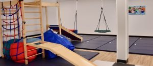 conditions treated with occupational therapy
